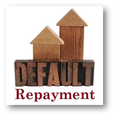 Default Repayment